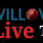 willow tv live